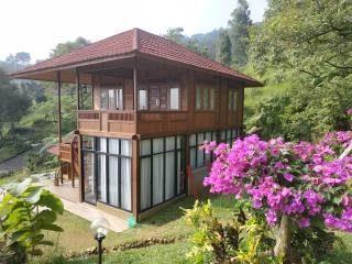 Rumah Kayu Tipe 54 (6 x 9)